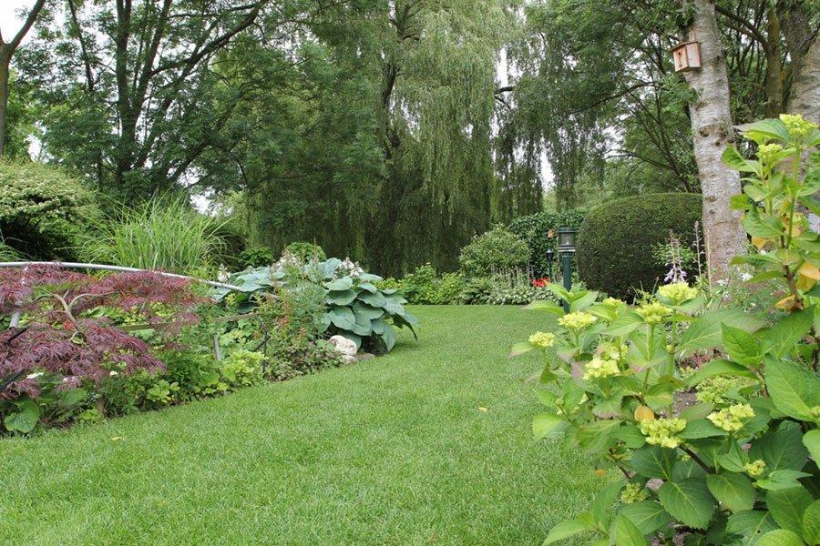Beplantingsplan Natuurlijke Tuin : Natuurlijke tuin projecten vogelaar hoveniers
